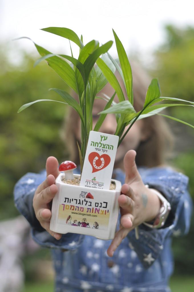 מתנה עציץ עם מסר של ישראל רף