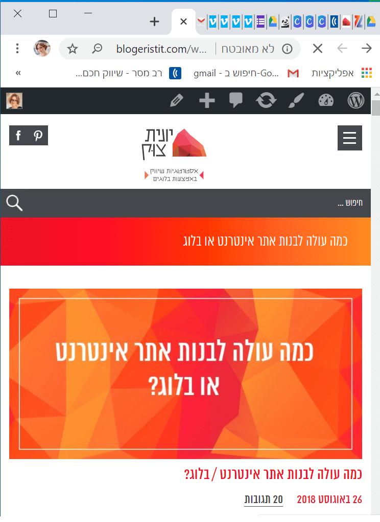 עשה ואל תעשה בעיצוב אתר או עיצוב בלוג הדס גולצקר אלמנטור ישראל